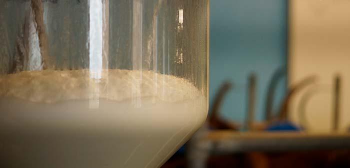 Milch in der Milchglocke, Ziegen im Hintergrund auf dem Melkstand